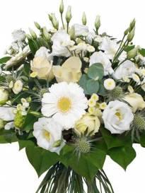 Funerali Pianoro - Necrologio di Anna Maria Mariani