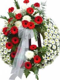 Funerali Ancona Alberici di Montemarciano - Necrologio di Enzo Fratesi