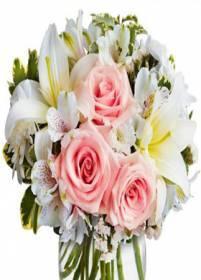 Necrologio ed informazioni sul funerale di Maria Pia Zanca