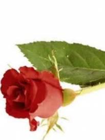 Necrologio ed informazioni sul funerale di Valentina Talpa