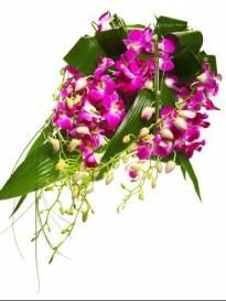 Funerali Cadelbosco di Sopra - Necrologio di Adele Rabitti