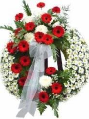 Necrologio ed informazioni sul funerale di Paola Verzolini
