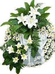 Necrologio ed informazioni sul funerale di Armando Andreoni