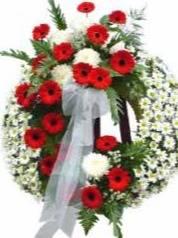 Necrologi di Ivana Moscoloni