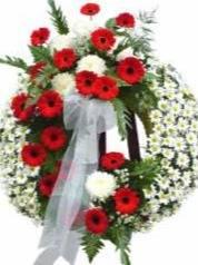 Necrologio ed informazioni sul funerale di Elisa Romagnoli